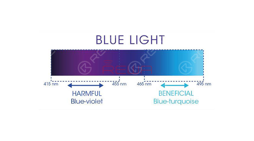 highly susceptible to the dangers of blue light.