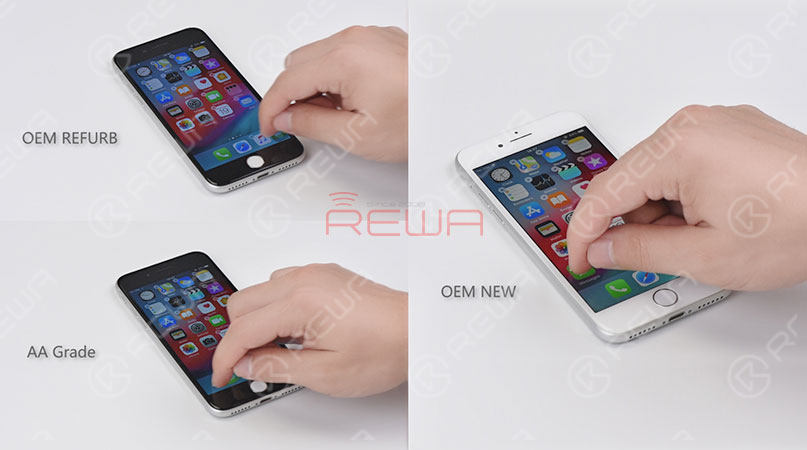 iPhone Screen & Flex Compatibility Test