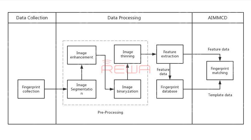 The Fingerprint Recognition System Of Samsung